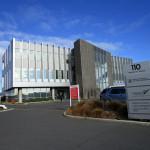 ニュージーランドのビザが混んでる!?