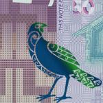 新デザインのニュージーランドドル札が今日から流通開始!