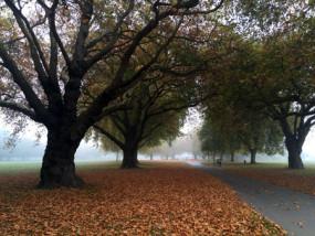 秋のクライストチャーチ