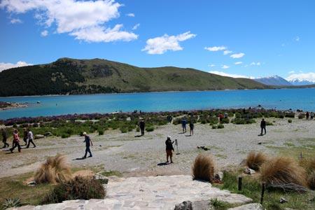 ニュージーランド テカポ