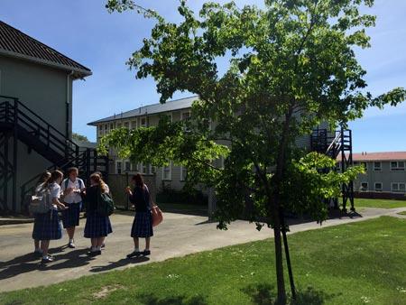 ニュージーランド 高校留学