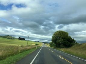 ニュージーランドで子連れ旅行