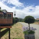 Pegasus Bay Winery (ペガサスベイ・ワイナリー)でテイスティング