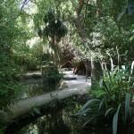 クライストチャーチの動物園ウイローバンク