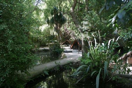 クライストチャーチの動物園