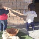 ニュージーランド 幼児教育