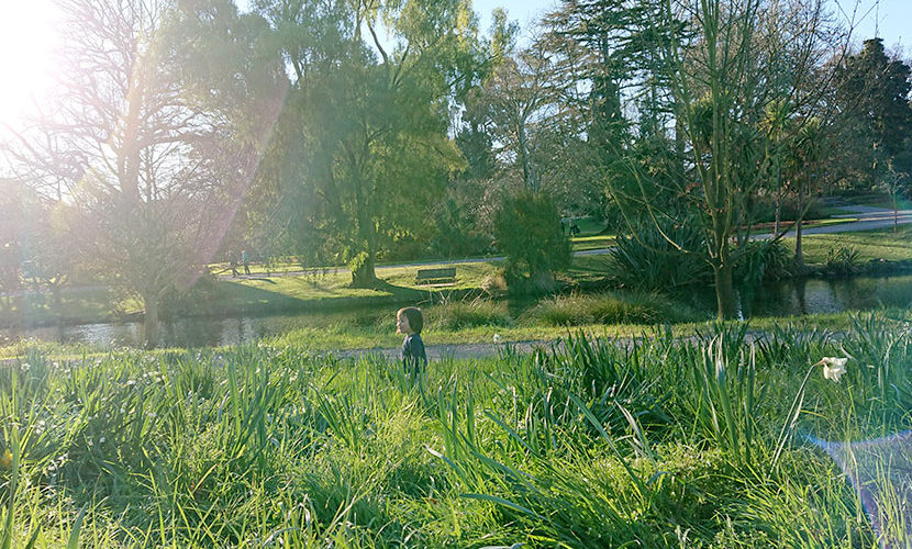 ニュージーランドの春