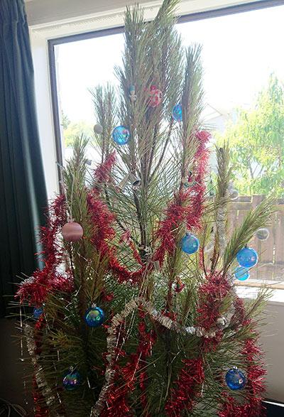 本物の木のクリスマスツリー